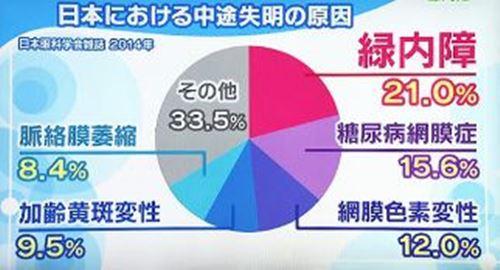 日本における途中失明の原因の円グラフ